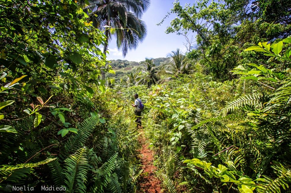Walking the way to reach Laguna.
